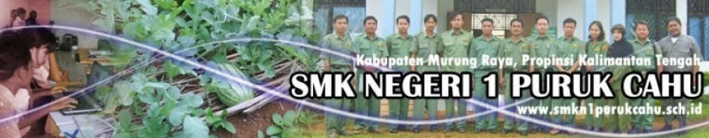 Website SMKN 1 PURUK CAHU
